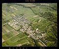 Luftbildarchiv Erich Merkler - Gammelshausen - 1984 - N 1-96 T 1 Nr. 878.jpg