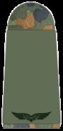 Luftwaffe-001-Flieger