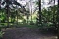 MADRID A.V.U. JARDIN DEL CAMPO DEL MORO - panoramio - Concepcion AMAT ORTA… (15).jpg
