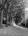 Maastricht, Prins Bisschopsingel, 1965 (2).jpg