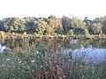 Magiscroft fisheries Main Loch - panoramio - 16charlie90 (3).jpg