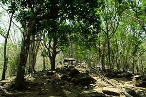 Malayattoor - Way to the Malayattoor hill top