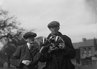 Man and boy holding badger cubs