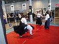 Mang'Azur - 2009 - Démonstration Arts Martiaux - P1050801.JPG