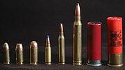 Many bullets