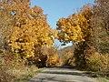 Maplewoodstatepark.jpg