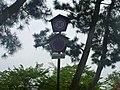 Matsue, Shimane (8408513392).jpg