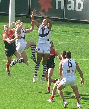 Matthew Pavlich - Pavlich flies high for a mark against Melbourne in 2008