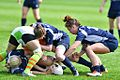 May 2017 in England Rugby JDW 9246-1 (34286405250).jpg