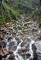 Mazandaran - Royan - Ab Pari Waterfall - panoramio.jpg
