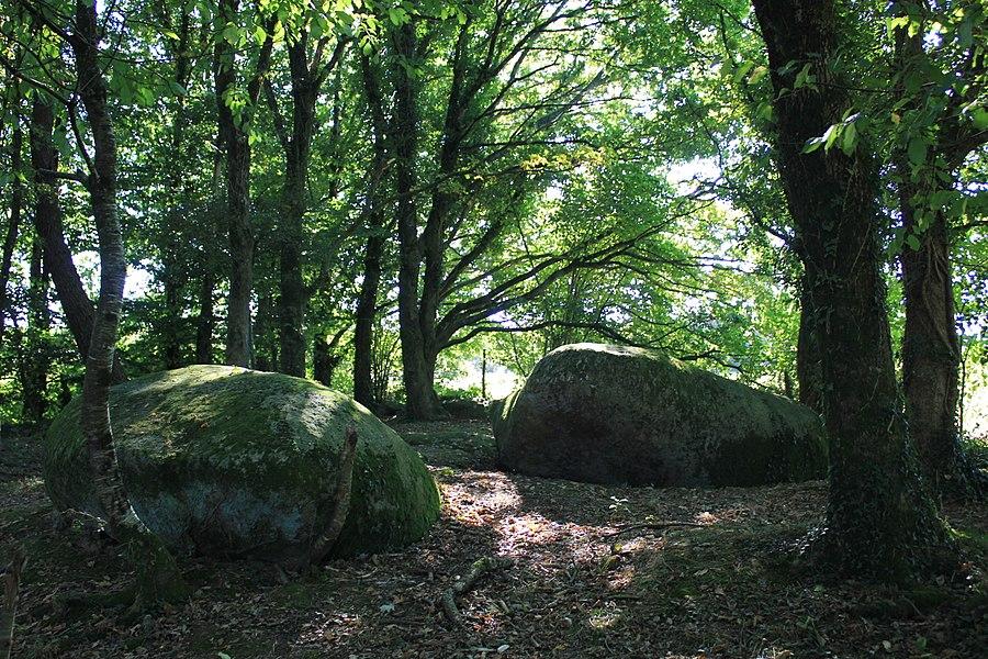 Menhir de Kermarquer (Moustoir-Ac): pierre couchées (menhirs basculés) à proximité