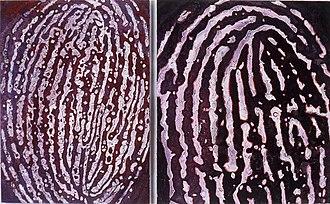 """Merle Temkin - Merle Temkin, Couple, diptych; acrylic paint, dye, thread on canvas; 46"""" x 76"""", 2003"""