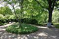 Mount Airy Arboretum - DSC03799.JPG