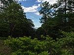 Mountain view (9256300754).jpg