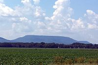 A flat, green, agricultural field with a rising Mount Nebo in the background.