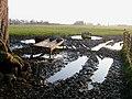 Muddy footpath - geograph.org.uk - 690338.jpg