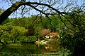 Muenster Botanischer Garten 5996.jpg