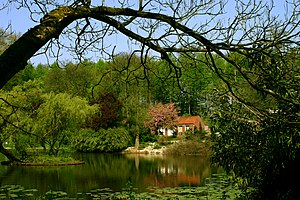 Botanischer Garten Münster - Lake within the garden area