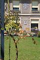 Musée de l'École de Nancy garden façade.jpg