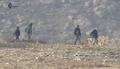 NDF fighters (Wadi Barada 2017).png