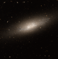 NGC1311 - hst 10210R814GB606.png