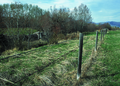 NRCSMT01065 - Montana (4977)(NRCS Photo Gallery).tif