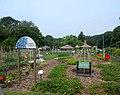 NYBG edible garden jeh.jpg