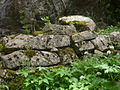 Nacionalen park Mavrovo (49).JPG