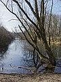 Nationaal Park Kennemerland (41327387052).jpg