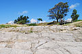 NaturBornholm plyty kontynentalne.jpg