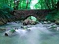 Naturschutzgebiet Neandertal NRW, Fluss Düssel, Fotograf J. & N. Suchorski 1.jpg