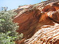 Navajo Sandstone Cliff.JPG