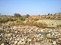 Navidhand new 341 - panoramio.jpg