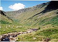 Near the head of the glen - geograph.org.uk - 1055017.jpg