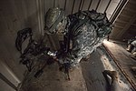 New Jersey National Guard and Marines perform joint training 150618-Z-AL508-011.jpg
