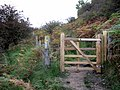New gate above Havern Beck - geograph.org.uk - 1525278.jpg