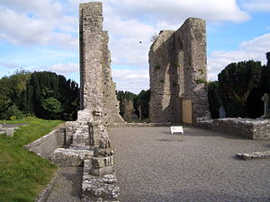 Trim, County Meath - Newtown Abbey