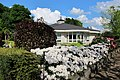 Nice villas and lovely Rhododendrons at Rozendaal - panoramio.jpg