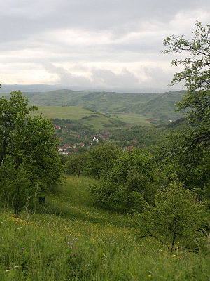 Fizeșu Gherlii - View of Nicula from Nicula Monastery
