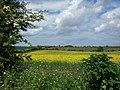 Norfolk countryside in spring. - geograph.org.uk - 437795.jpg