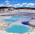Norris Geyser Basin, Yellowstone NP 9-11 (15407433028).jpg