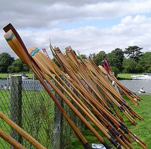 Oar - Traditional wooden oars