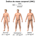 Obesity & BMI-es.png