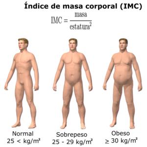 Bajar de peso rapido 30 kilos overweight
