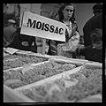 Oct. 1951. La fête du raisin Chasselas à Moissac (1951) - 53Fi4911.jpg