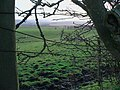 Old cultivation marks on pasture land near West Ditchburn - geograph.org.uk - 1124414.jpg