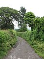 Old routeway at Clint - geograph.org.uk - 471060.jpg