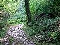 Old waterwheel - geograph.org.uk - 524650.jpg