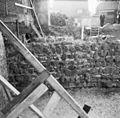 Opgraving - Hardenberg - 20100543 - RCE.jpg