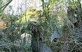 Overgrown kilns at Pistyll near Llandybie - geograph.org.uk - 82137.jpg